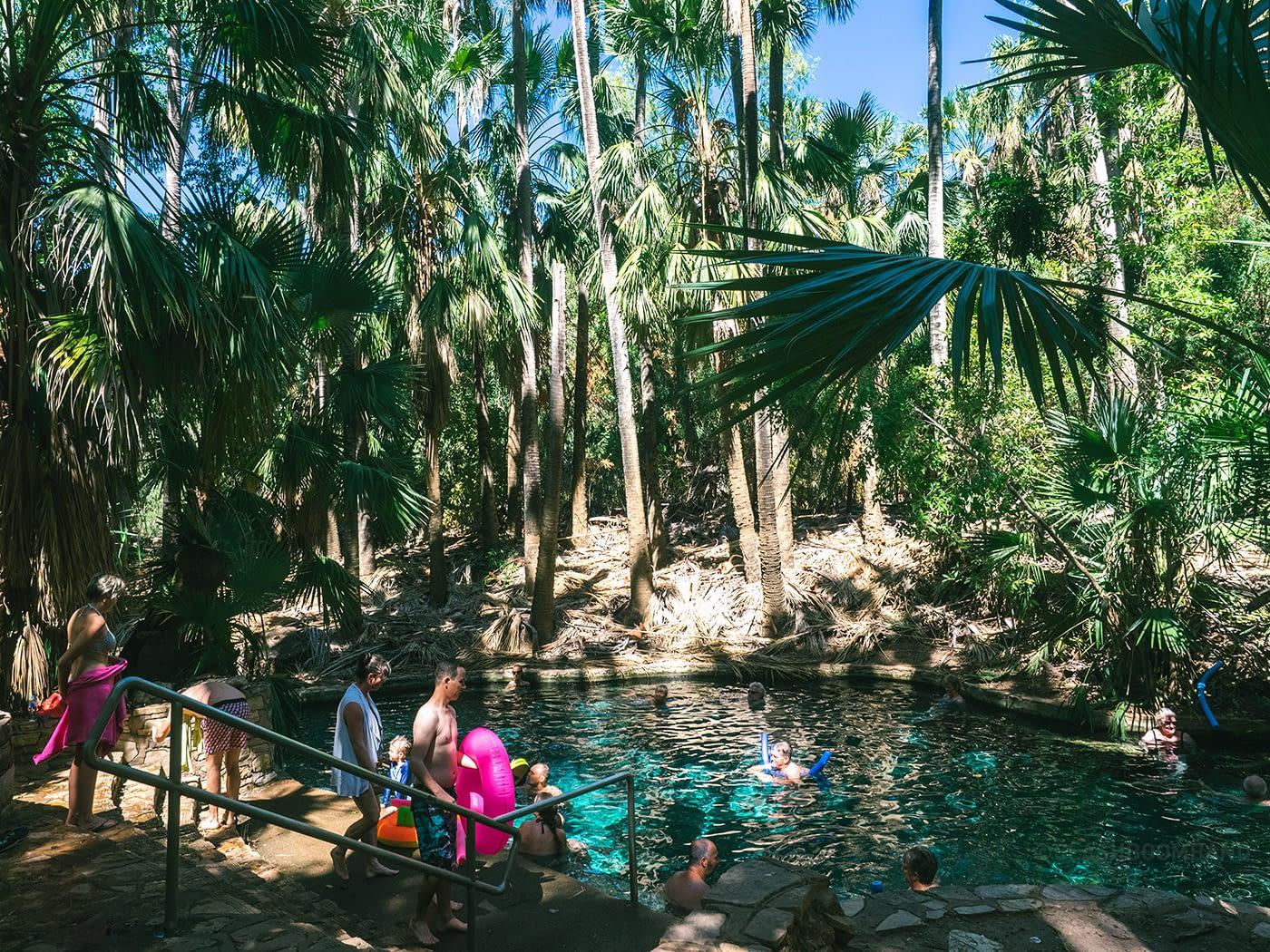NT Australia - Mataranka - Elsey National Park swimming area 2