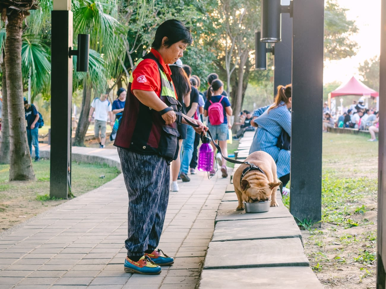 Tainan - Pokemon Go Safari Event - Pet owners giving their dog water