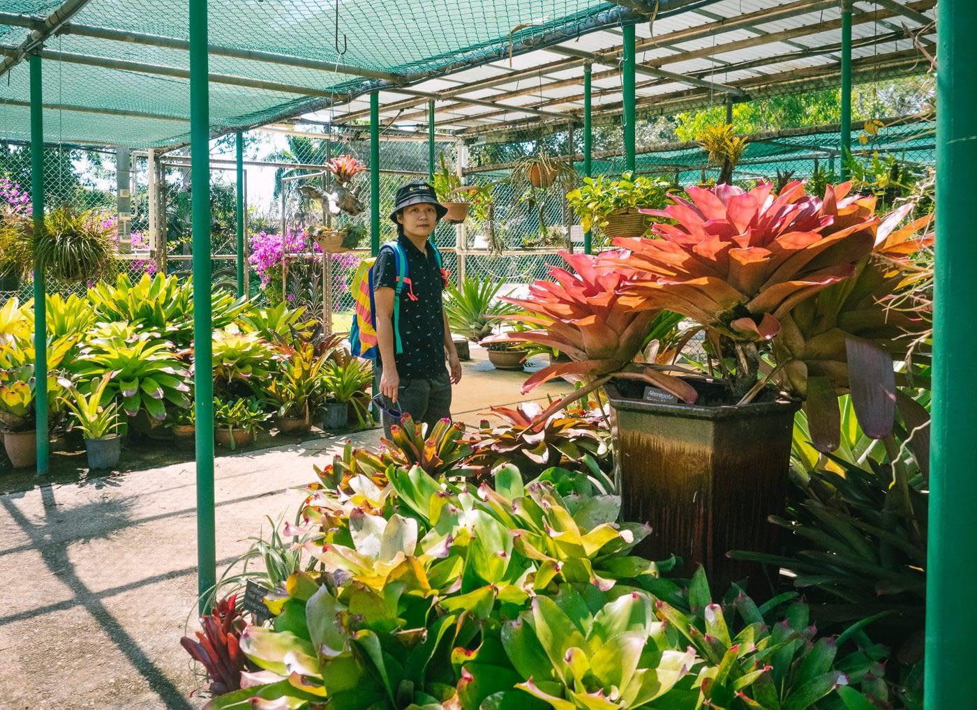 My boss enjoying the fauna & florals