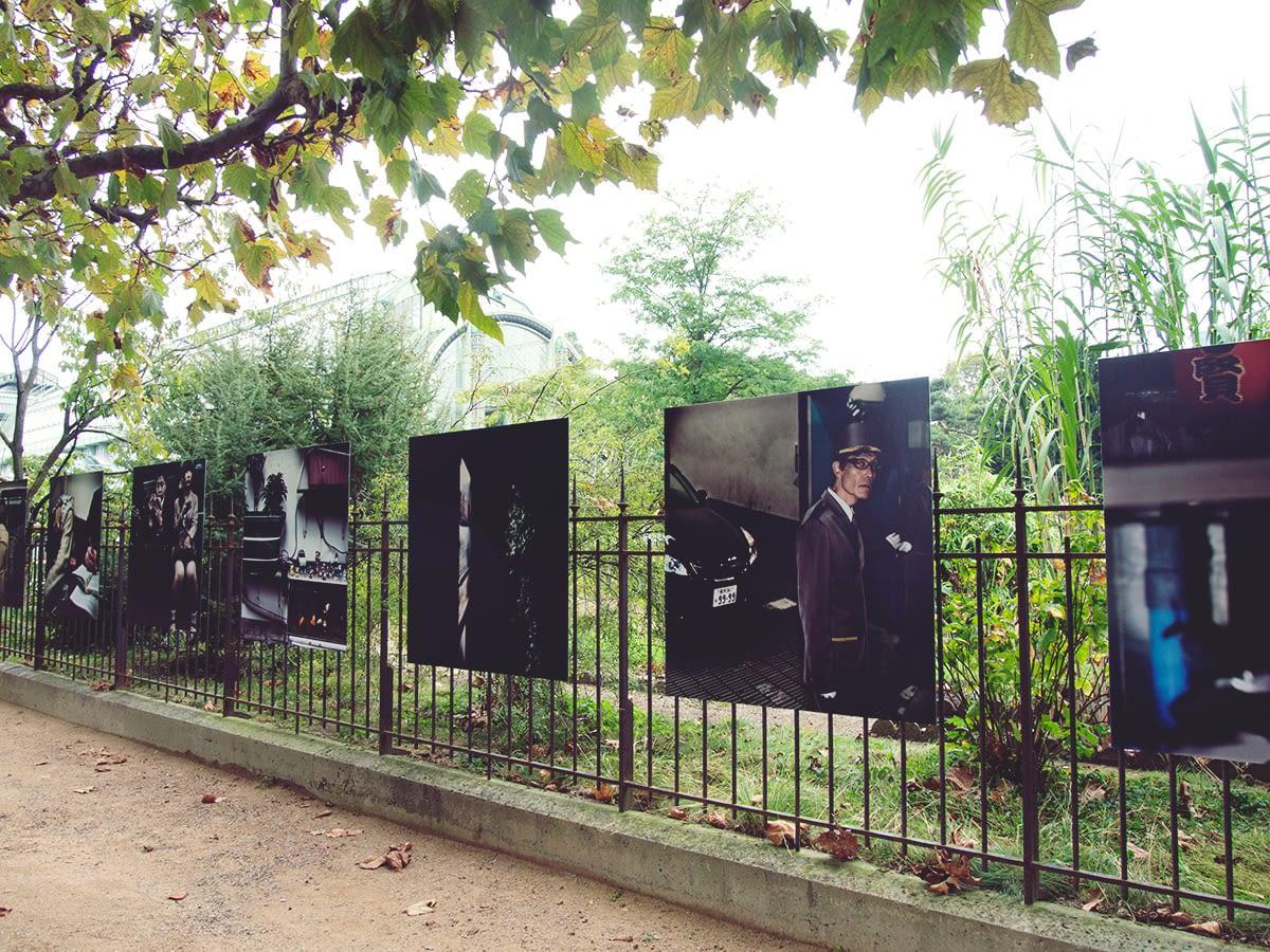 paris-day10_Jardin_Des_Plantes-39