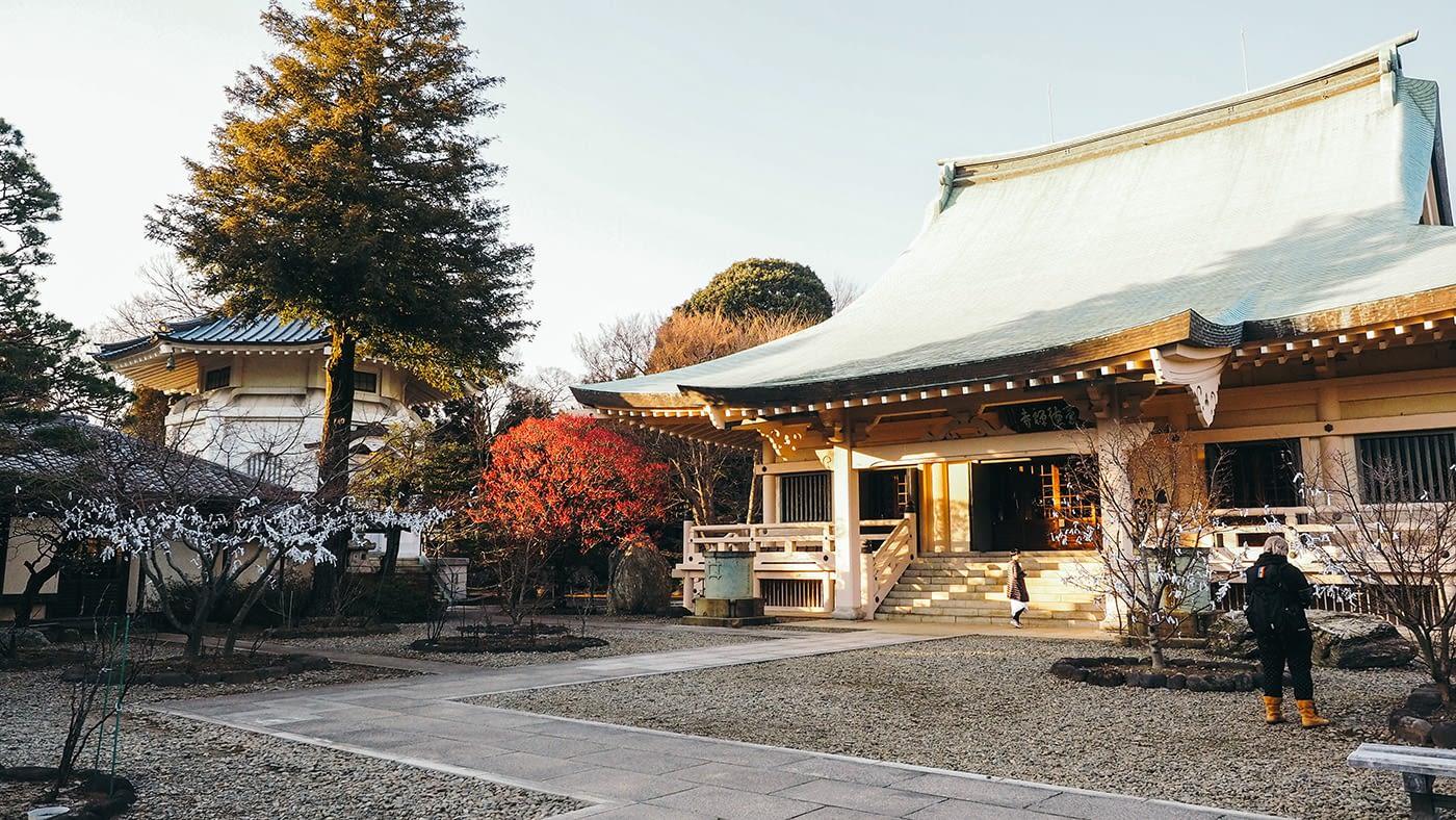 Japan - Gotokuji Temple - Temple entrance