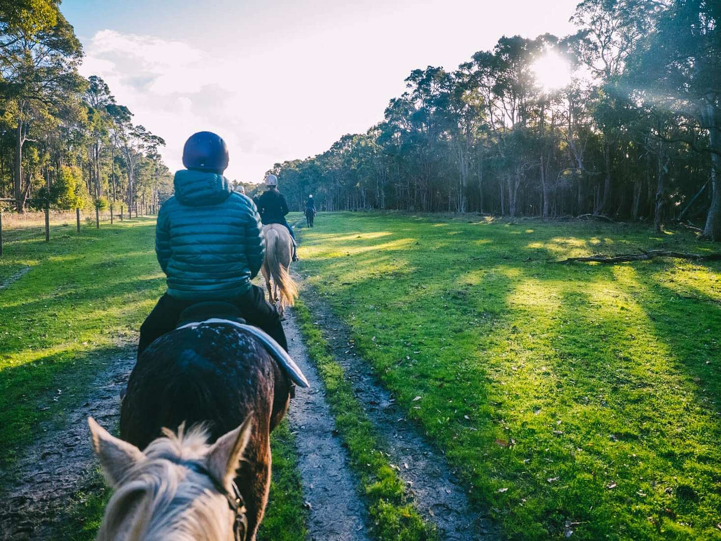 Perth, Australia - Jesters Flat - Peaceful horse riding experience